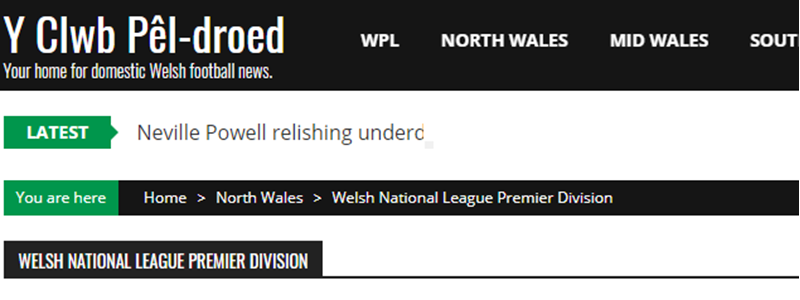 Albion feature on Y Clwb Pêl-droed